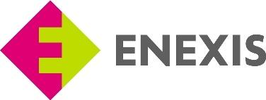 Enexis Netbeheer Logo