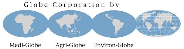 Globe Corporation Logo